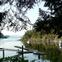 Victoria – Butchard Gardens – Roche Harbour