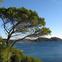 Pampelonne Bay-St.Tropez