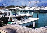 Seaspray Resort and Marina